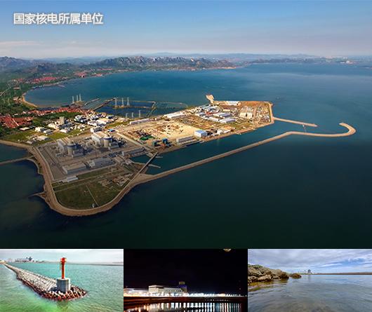 1国家核电所属单位4山东核电-最终.jpg